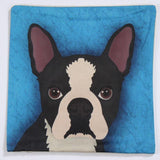 French Bull Dog on Blue Background