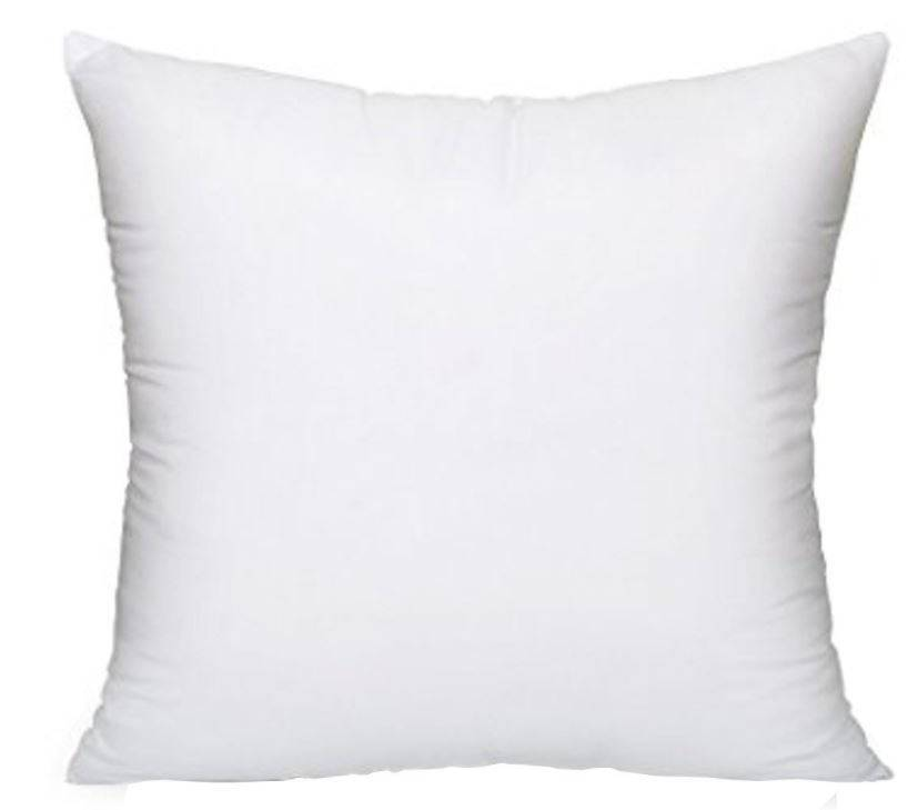 Pillow Insert 8x8