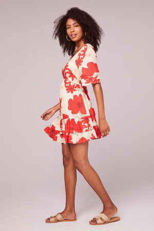 Euclid Red Poppy Short Sleeve Mini Dress Side