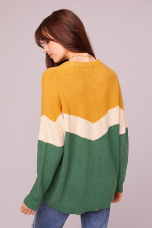 Hillhurst Long Sleeve Colorblock Sweater Back