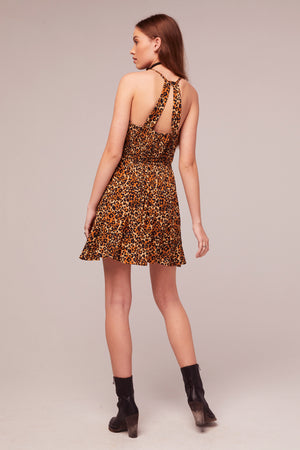 Tigers Eye Animal Print Mini Dress