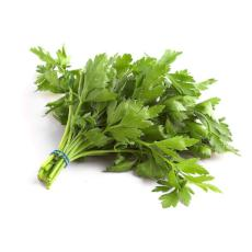 Parsley -  Flat (Bunch of 5) - Virgara Fruit & Veg, Adelaide wide free fresh fruit & veg delivery