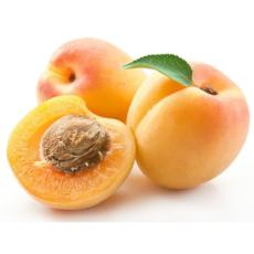 Apricots - South Aussie 500gm - Virgara Fruit & Veg, Adelaide wide free fresh fruit & veg delivery