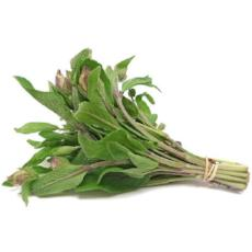Sage (Bunch) - Virgara Fruit & Veg