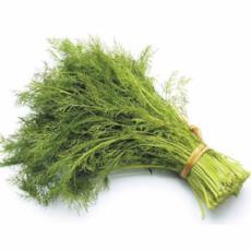 Dill (Bunch) - Virgara Fruit & Veg