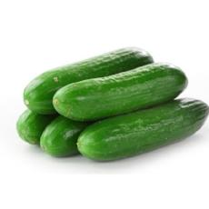 Cucumber Lebanese - 4Pcs - Virgara Fruit & Veg