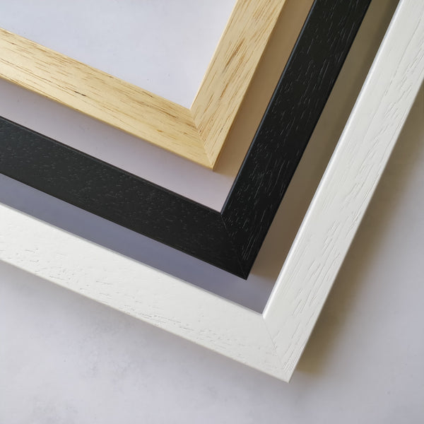 10 Narrow Moulding Frames A3+ Mount