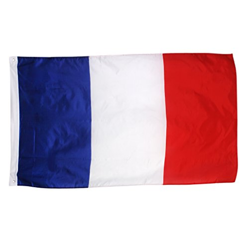 New 3x5 National Flag of France French Country Flags