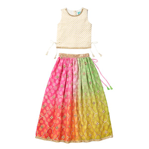 Color Popsicle Skirt with Crop Top