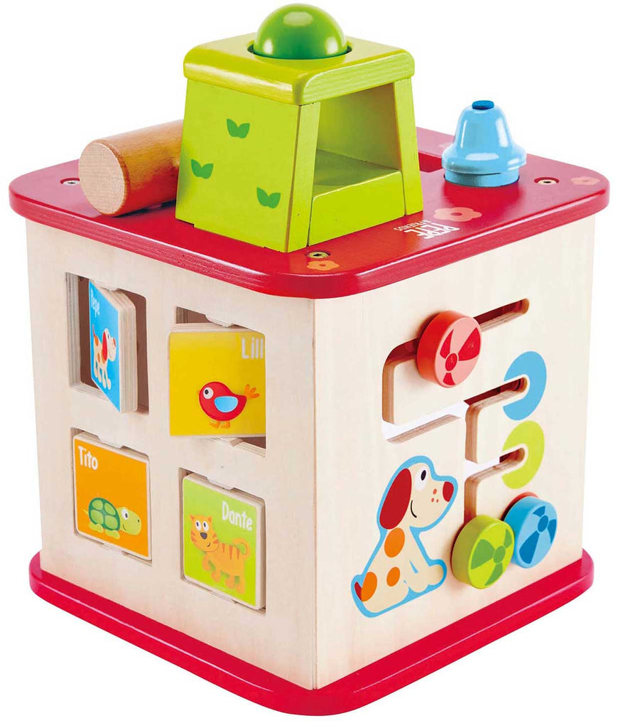 Hape E1812 Friendship Cube