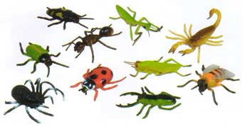 Get Ready Kids 876 Insects Figure Set 10 Pieces
