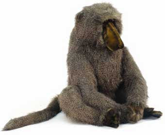 Hansa 4315 Large Adult Baboon Plush Stuffed Animal