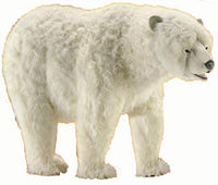 Hansa 3639 Polar Bear on All Fours Plush Stuffed Animal