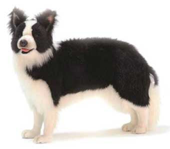 Hansa 4563 Border Collie Standing Plush Stuffed Animal