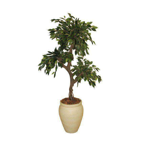 1.2m Crazy Ficus in Cement Round Creta Pot - Office Pro