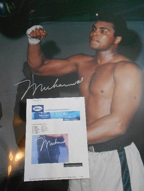 Muhammad Ali Signed Color 30 X 40 Size Speed Bag Photo Online Authentics