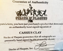 Cassius Clay Autographed Everlast Boxing Glove with A Bold signature and S.O.P certified