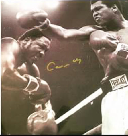 Muhammad Ali vs Joe Frazier signed autographed 16 x 20 boxing photo Steiner cert