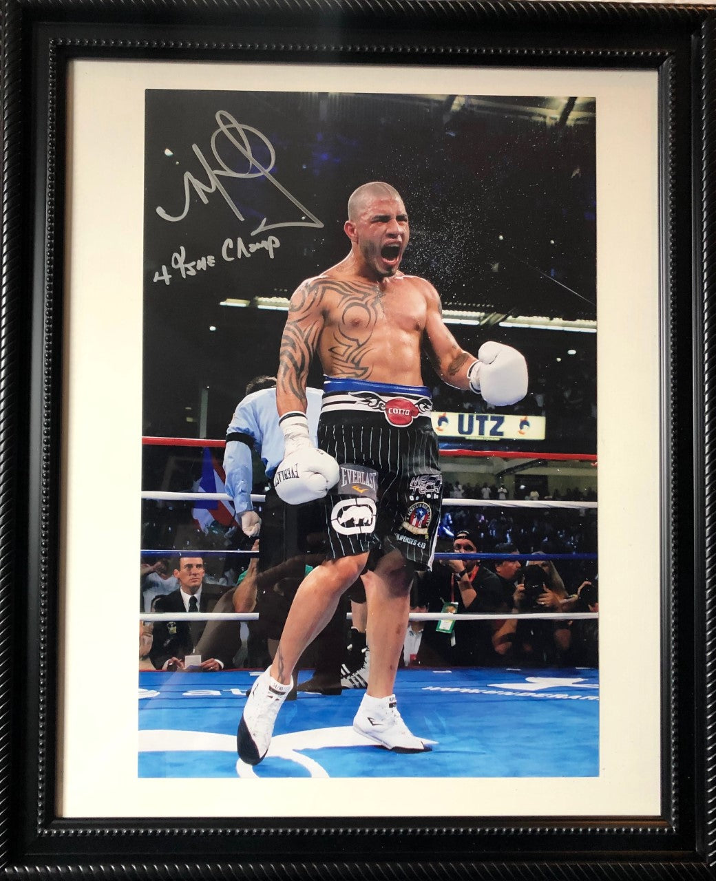 Miguel Cotto autographed Framed Silver signature 11x17 Photo size