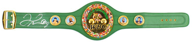 Floyd Mayweather Jr. Signed WBC Diamond Championship Belt (JSA FULL LETTER)