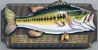 Tennessee Magnet Bass