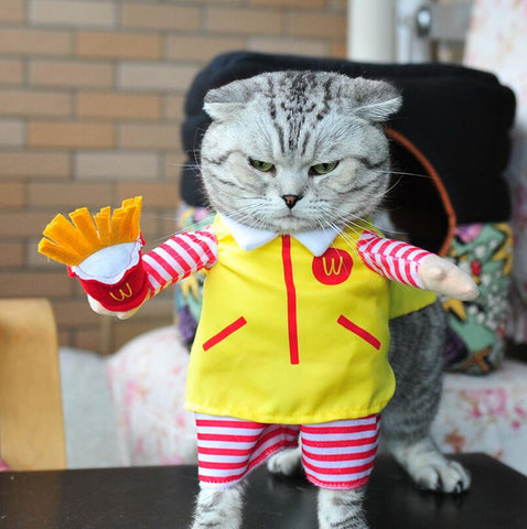 Cute Cat Halloween Costume , Fast Food Character Clothes