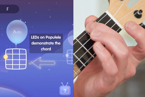 The Ukulele Chords