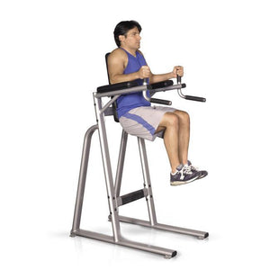 Inflight Fitness VKR Vertical Knee Raise Ab Workout
