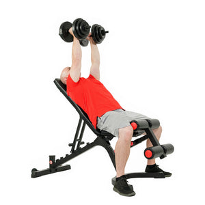 Sunny Health and Fitness SF-BH6920 Incline Dumbbell Workout.