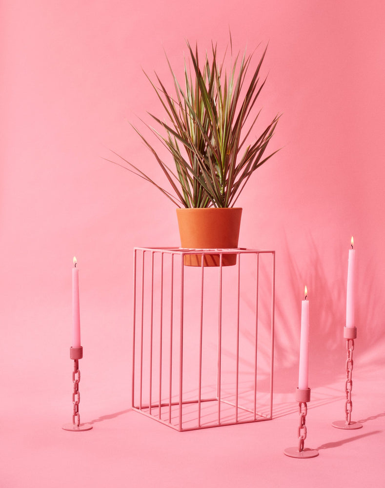 Pink Sunbeam Plant Stands