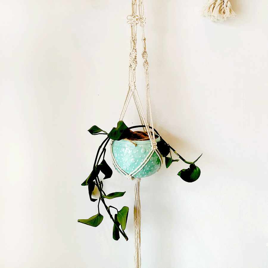 Macrame Plant Hanger - March, 2020