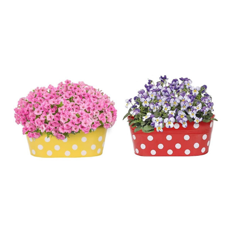 Hanging Flower Pots @Buy-1-Get-1 Dotted design Small Yellow & Red - Wudore.com