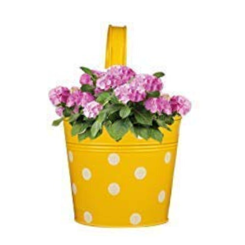 Handpainted Hanging planters Dotted design I Wudore.com