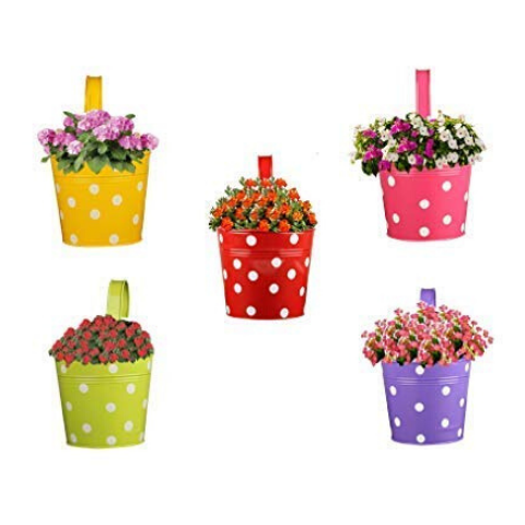 Multi pack Hanging Flower pots - Wudore.com