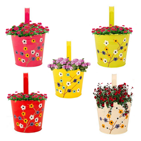 Multi pack Hanging Flower Pots I Floral Design Set-of-5