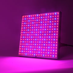 Full Spectrum SMD2835 Grow Light For Hydroponic Lighting - ePeriod Led Lighting Store
