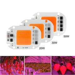 LED Grow Light Chip Hydroponice AC 220V Full Spectrum For Plant