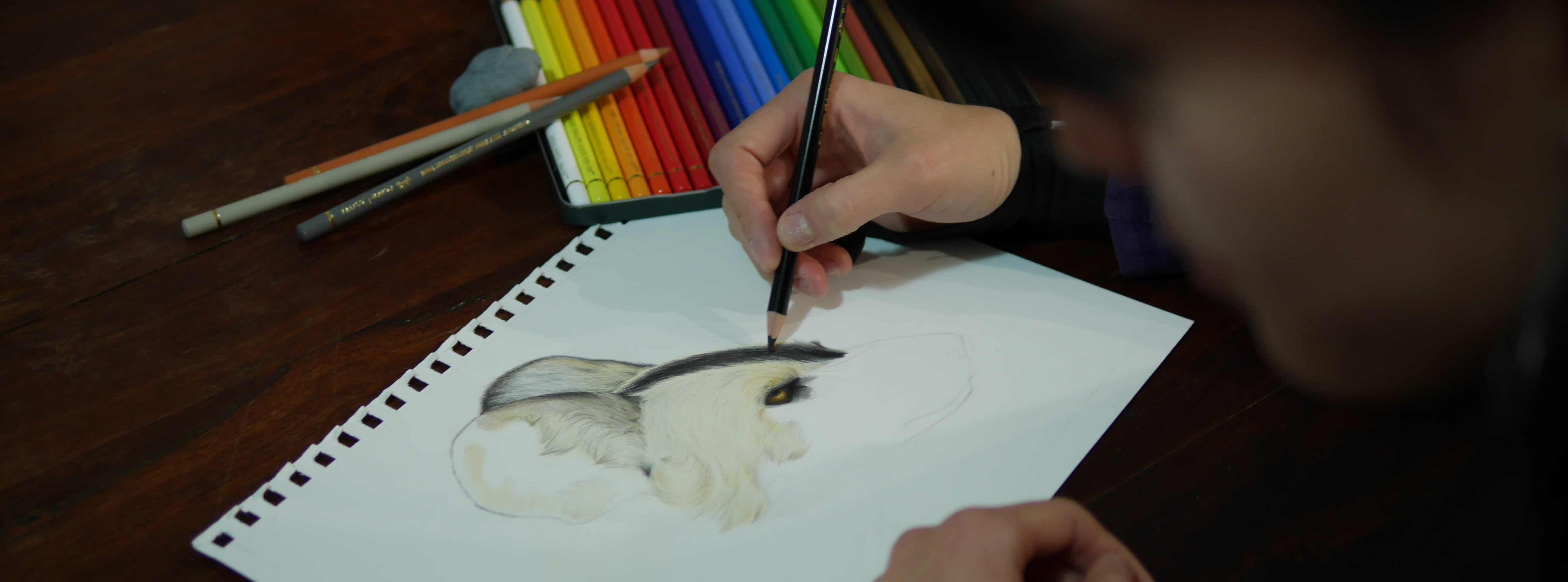 Catherine illustrating an African painted dog