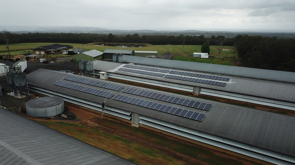 Lakesland NSW - Turkey Farm - 50kw System