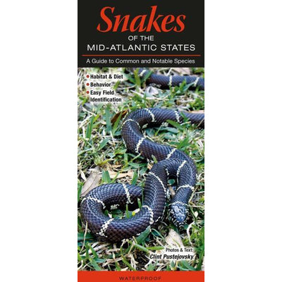 Snakes of Mid-Atlantic