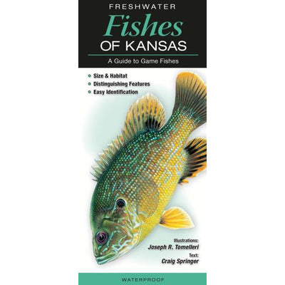 Freshwater Fishes of KS
