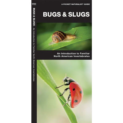 Bugs and Slugs