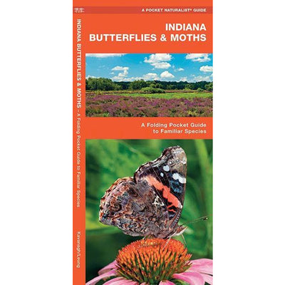 Indiana Butterflies and Moths