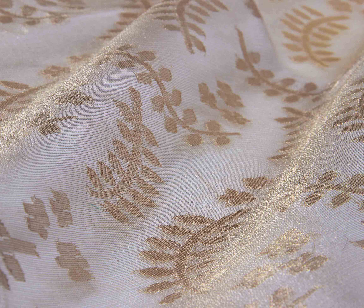 Beige Kora Silk Net tissue handwoven Banarasi saree with stylized leaf motifs (3) closeup
