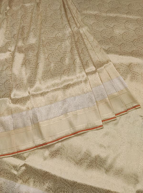 Cream katan silk handloom Banarasi saree with heavy brocade jaal (3) Center