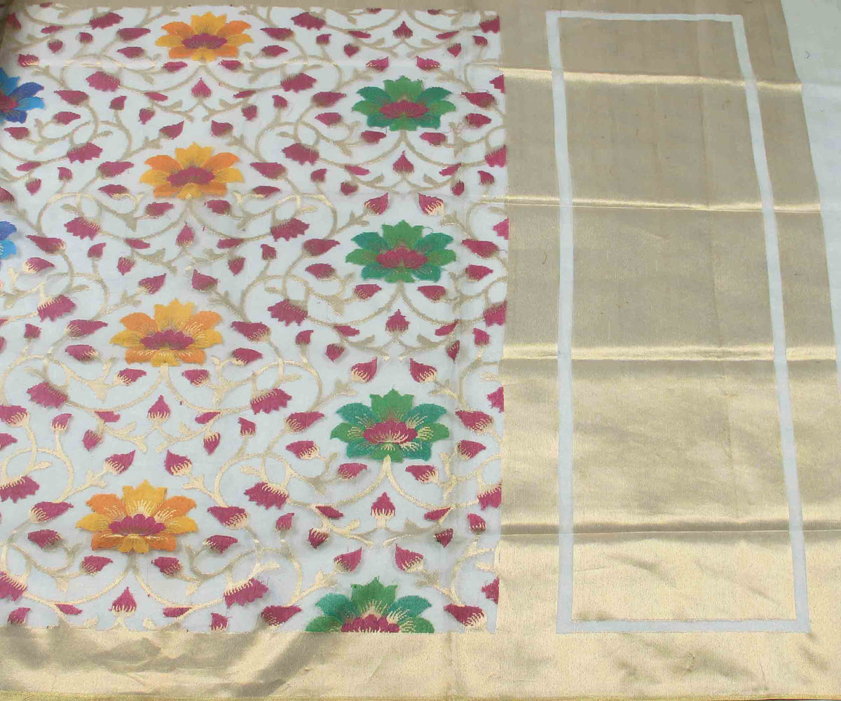 Multicolor silk net tissue Handwoven Banarasi Saree with flower jaal (2) flat
