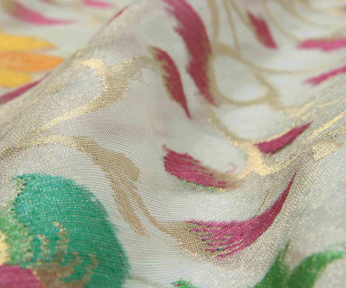 Multicolor silk net tissue Handwoven Banarasi Saree with flower jaal (3) closeup