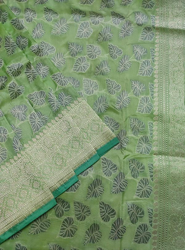 Pista green katan silk handloom Banarasi saree with money plant jaal (2) close up
