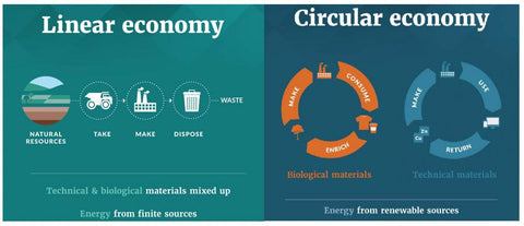 Circular economy sustainable fashion