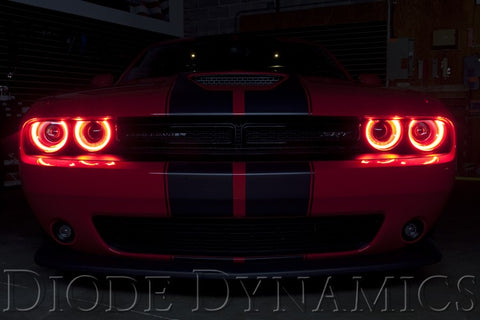 Diode Dynamics 2015-2017 Dodge Challenger Multicolor DRL LED Boards